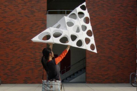 cellular foam model